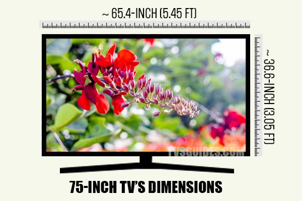 75-inch TV's Dimensions
